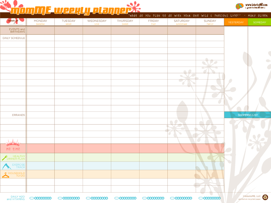 graphic regarding Time and to Do Planner known as Picking out a Planner: LobotoME Weekly Planner Examine +
