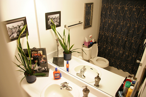 Declutter & Organize Your Bathroom