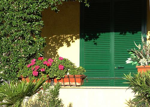 Rejuvenating Your Home for Spring