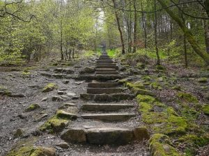 Read more about the article The Importance of Breaking Goals into Managable Steps