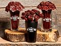 Beef Jerky Flower Bouquets