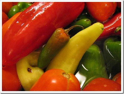 salsa canning
