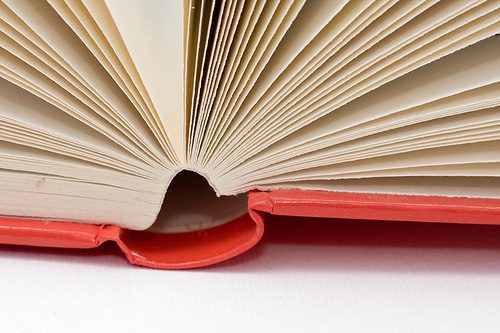 book gutter and pages