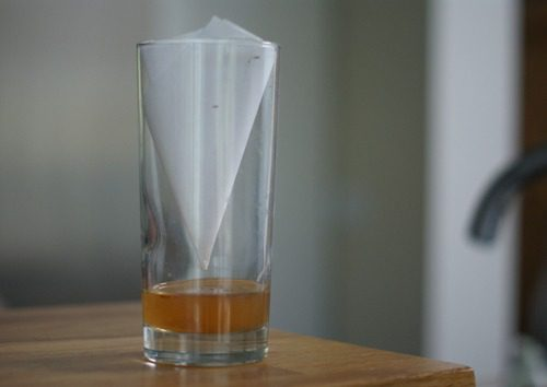 Quick Tip: Easy DIY Fruit Fly Trap > Life Your Way