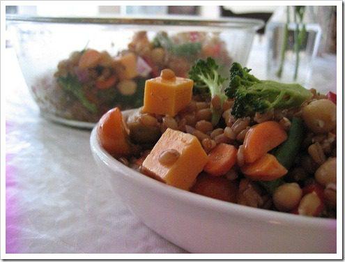cold-spelt-salad
