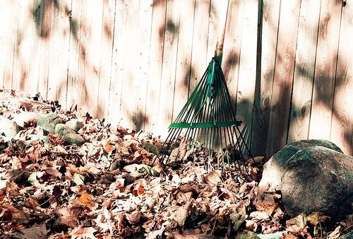 You are currently viewing Fall Cleaning Your Home to Welcome Autumn