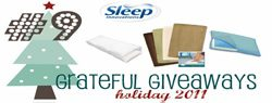 You are currently viewing Grateful Giveaways #9: Sleep Innovations Memory Foam Bath Mats, Pillow + Travel Pillow