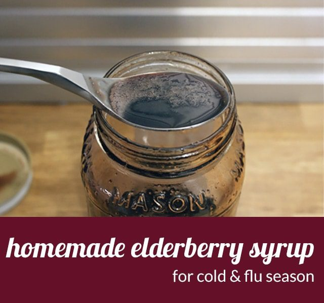 Homemade elderberry syrup to fight cold & flu viruses