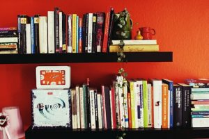 Read more about the article In Defense of a Small Home Library