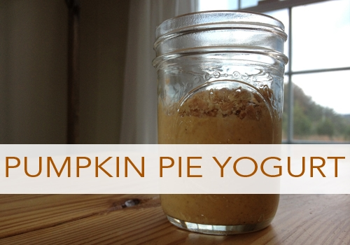 Pumpkin Pie Yogurt