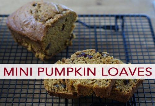 Mini Cranberry-Walnut Pumpkin Loafs
