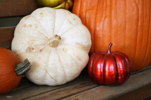 The Art of Pumpkins