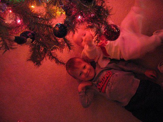 Artificial vs Real Christmas Trees