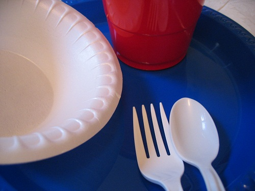 disposable dishes