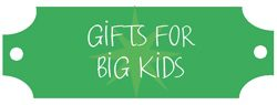 2012 Holiday Gift Guide: Gifts for Big Kids