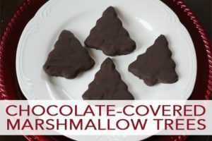 Read more about the article 101 Days of Christmas: Chocolate-Covered Marshmallow Trees
