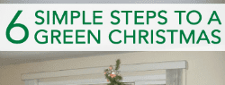 Read more about the article 6 Simple Steps to a Greener Christmas