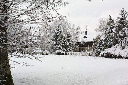 Eco-Benefits of Staying Home in the Winter