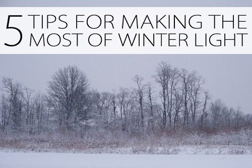 5 Tips for Making the Most of Winter Light