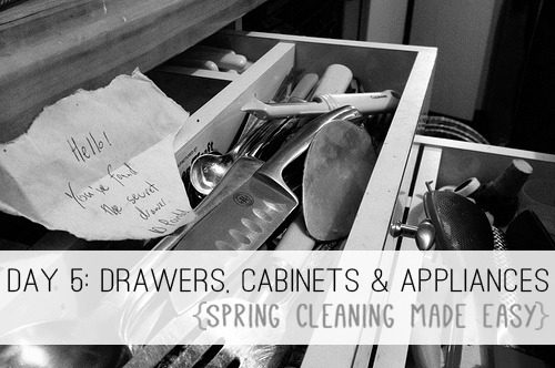 Day 5: Drawers, Cabinets & Appliances {Spring Cleaning Made Easy} at lifeyourway.net