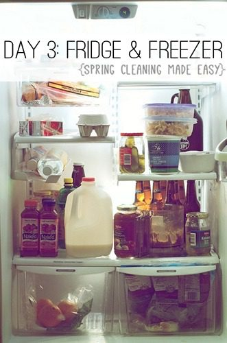 Day 3: Clean Your Refrigerator & Freezer {Spring Cleaning Made Easy} at lifeyourway.net