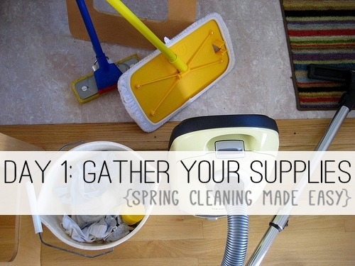 8e2a8bfc624c Day 1  Gather Your Supplies  Spring Cleaning Made Easy  at lifeyourway.net