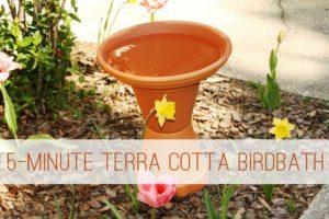 5-Minute Terra Cotta Birdbath