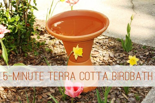 5 Minute Terra Cotta Birdbath Gt Life Your Way