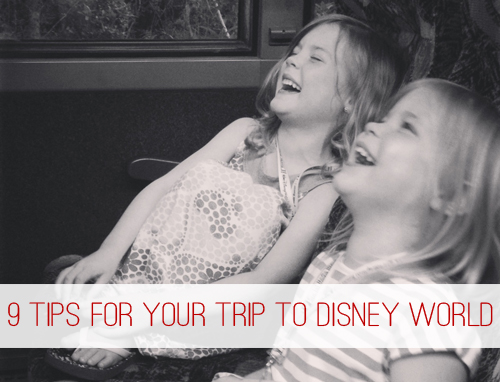 9 Tips to Help You Save Money & Enjoy Your Trip to Disney World at lifeyourway.net