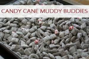 101 Days of Christmas: Candy Cane Muddy Buddies