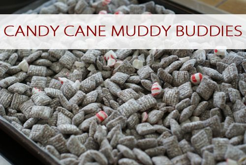Candy Cane Muddy Buddies {101 Days of Christmas at lifeyourway.net}