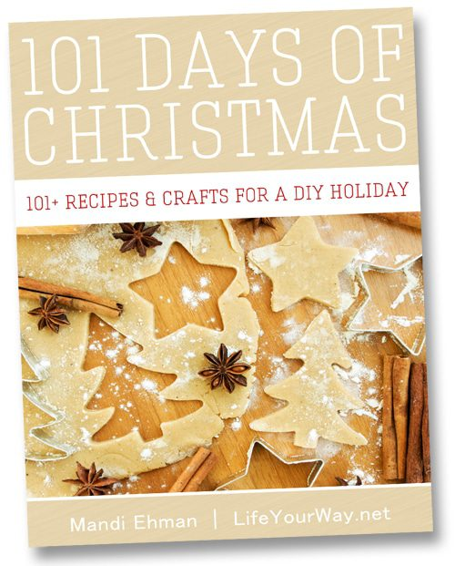 101 Days of Christmas eBook