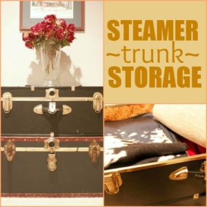 Read more about the article Creative (and Inexpensive) Storage Solutions