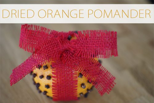 Dried Orange Pomander {101 Days of Christmas at lifeyourway.net}