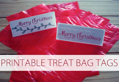 Printable Treat Bag Tags {101 Days of Christmas at lifeyourway.net}