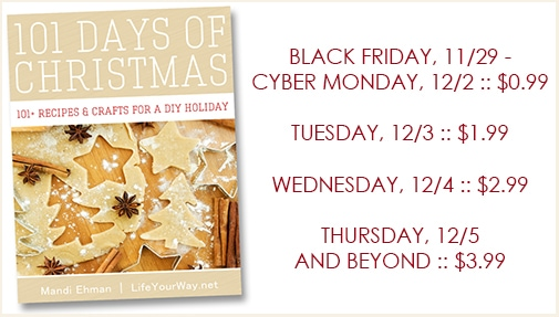 101 Days of Christmas eBook $0.99 for Kindle!