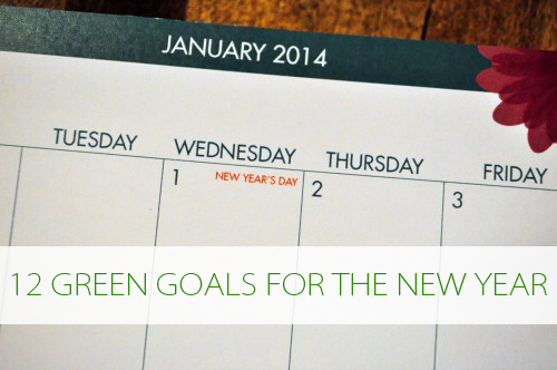 12 Natural Living New Years Goals at lifeyourway.net