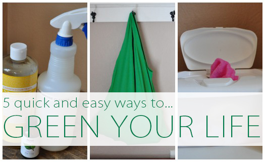 5 Quick and Easy DIY Projects to Green Your Life at lifeyourway.net
