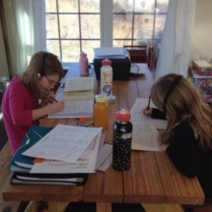 2014-2015 Homeschool Curriculum Plans