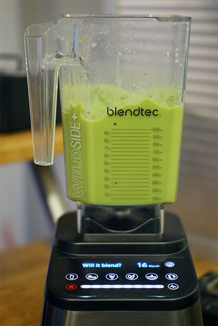 Spinach Ice Cream In The Blendtec