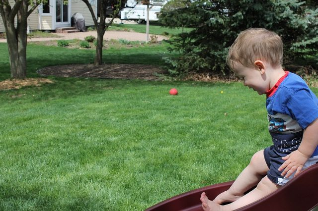 Why We Pretty Much Ignore Our Grass (& You Should, Too)