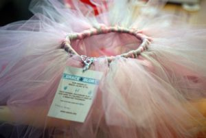 Changing the World, One Tutu at a Time