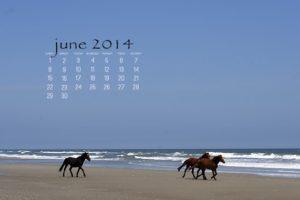 Read more about the article Dear Readers… + Desktop Calendar {June 2014}