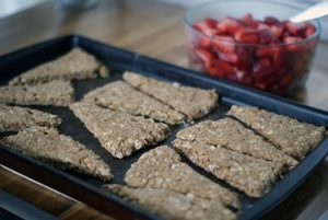 Dairy Free Apple-Cinnamon Oat Cakes