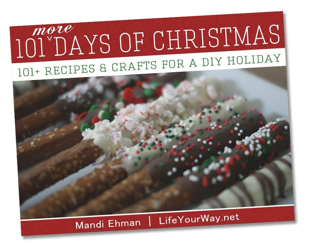 You are currently viewing The 101 {More} Days of Christmas ebook is here!