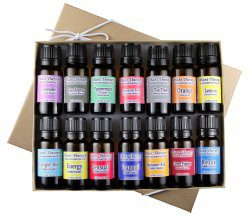 14 Essential Oil Set from Plant Therapy