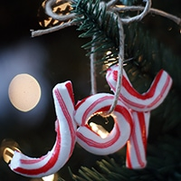 Candy Cane Ornaments