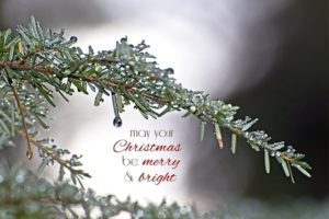 Merry & bright desktop background {101 Days of Christmas}