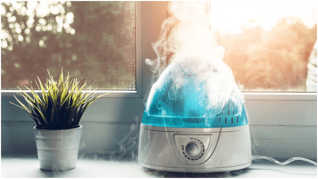 Humidifier Recommendations