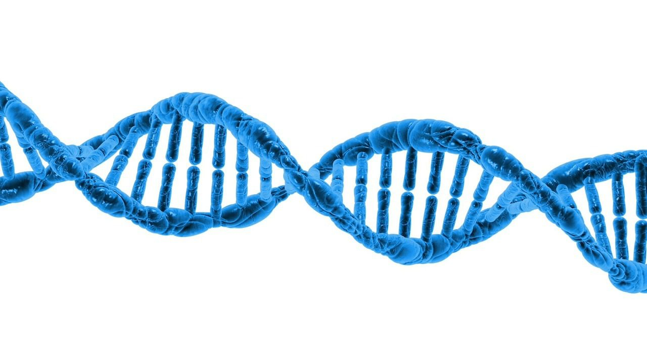 3 Things You Need to Know About Next-Generation Sequencing for Genetic Carrier Screening